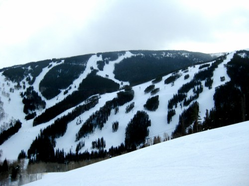 Birds of Prey, Vail CO