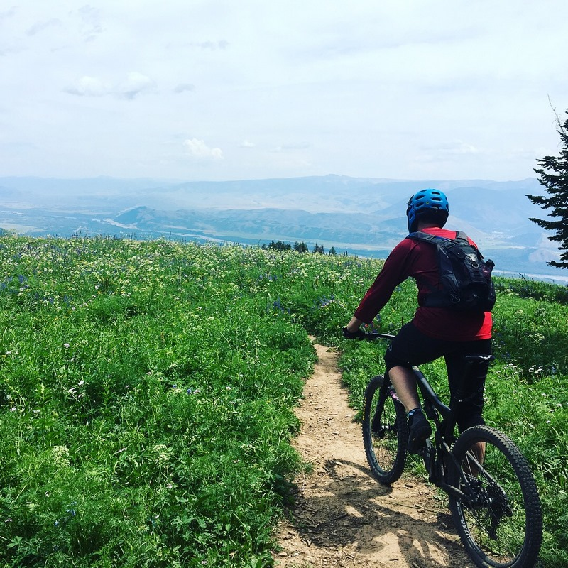 vail moutain biker on trail