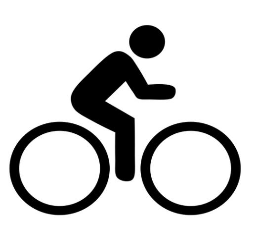 biker icon